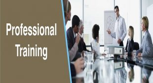 Professional Training | Best Placement consultants in Lucknow